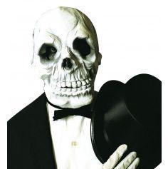 Masque Intégral de Crâne