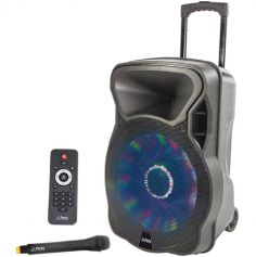 Enceinte portable 12'' 700W avec Micro