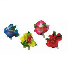 Pince Fleur Hawaïenne - Coloris au Choix