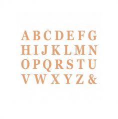 48 lettres en carton avec adhesif couleur au choix | jourdefete.com