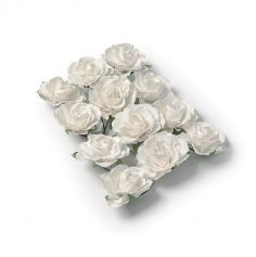 12 Roses Blanches sur Tige