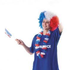 Collier Hawaïen de Supporter - France