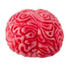 Décoration d'Halloween - Cerveau