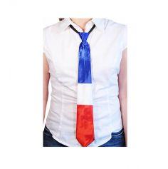 cravate adulte polyester tricolore france | jourdefete.com