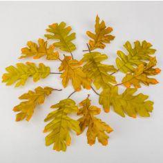 12-feuilles-chene-vert | jourdefete.com