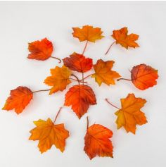 feuilles-erable-orange | jourdefete.com
