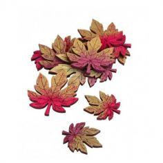 confetti-bois-feuilles-automne|jourdefete.com