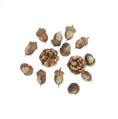 14 pommes de pin et glands avec paillettes or | jourdefete.com