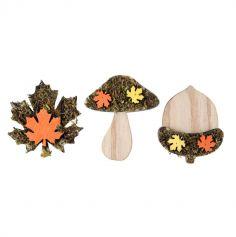 assortiment-bois-automne-mousse | jourdefete.com