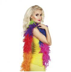 boa de plumes rainbow pour adulte | jourdefete.com