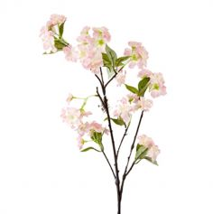 branche-arbre-fruitier-decoration-florale|jourdefete.com