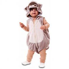 deguisement-raton-laveur-bebe|jourdefete.com
