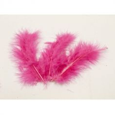 20 Plumes Décoratives - Fuchsia
