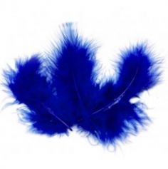 Sachet de 20 Plumes Décoratives - Bleu Roi