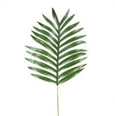 feuille-palmier-tropical-jungle-60cm|jourdefete.com