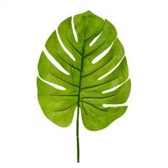 feuille-tropical-philodendron-jungle-palmier|jourdefete.com