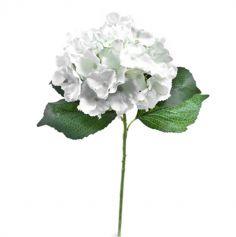fleur-hortensia-tige-blanc-feuilles|jourdefete.com