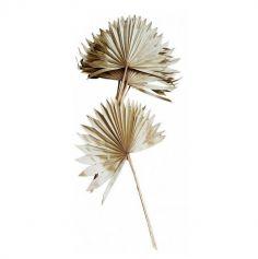 feuilles de palmier entieres naturelles | jourdefete.com