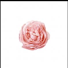 Rose Ancienne Décorative de Table - Corail