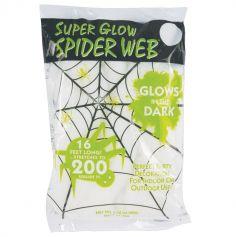 60 Grammes de Toile d'Araignée Blanche - Brille dans le Noir