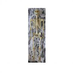 Squelette Décoratif - 165 cm