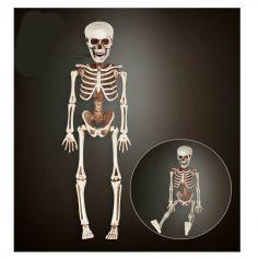 Squelette en plastique - 40 cm