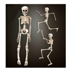 Squelette en plastique - 50 cm