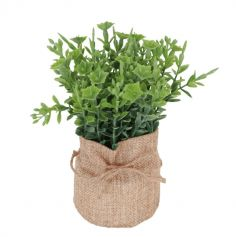 plante-verte-decoration-vegetal|jourdefete.com