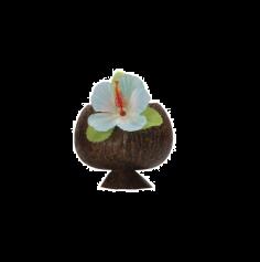 Gobelet à Cocktail Noix de Coco - Bleu