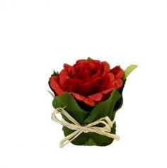 Rose pot feuillage - Coloris au choix