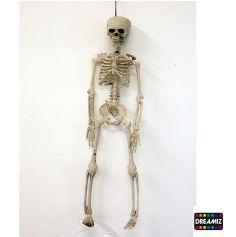 Décoration Squelette Articulé Halloween