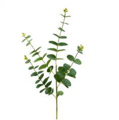 feuille-eucalyptus-decoration-vert | jourdefete.com