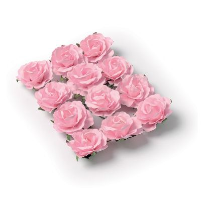 12 Roses Roses sur Tige