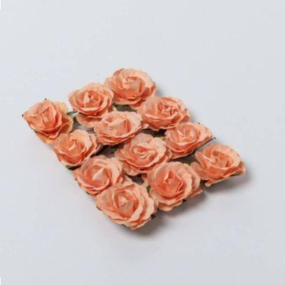 Sachet de 12 Roses sur tige - Pêche