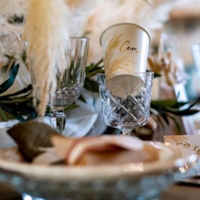 8 gobelets en carton communion avec pampa | jourdefete.com