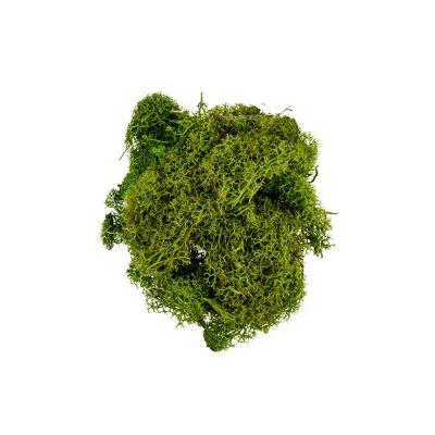 mousse-vegetale-decoration | jourdefete.com