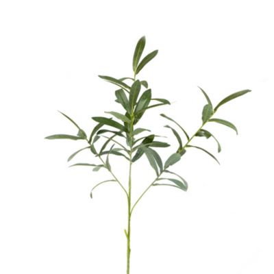 branche olivier 4 tiges 73 cm   jourdefete.com