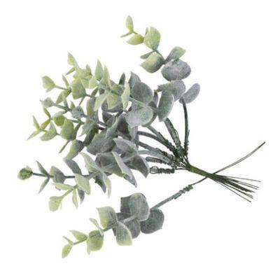 10 Branches d'Eucalyptus Givrées sur Tige | jourdefete.com