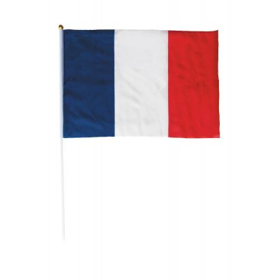drapeau tricolore de la France avec manche de 45 cm   jourdefete.com
