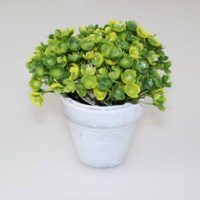 Décoration Plante Grasse en pot en céramique - Jaune