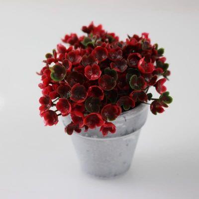 Décoration Plante Grasse en pot en céramique - Rouge