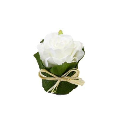 Rose pot feuillage - Blanc   jourdefete.com