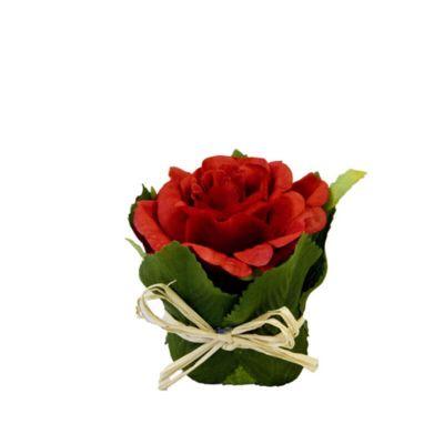 Rose pot feuillage - Rouge   jourdefete.com