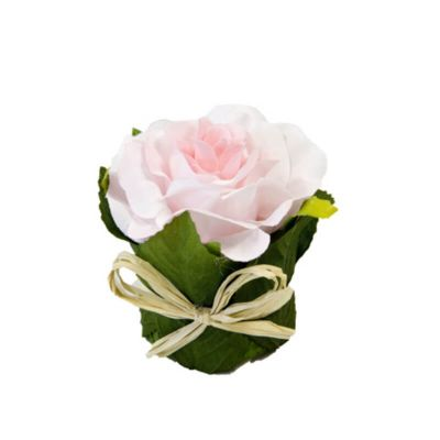 Rose pot feuillage - Rose clair   jourdefete.com