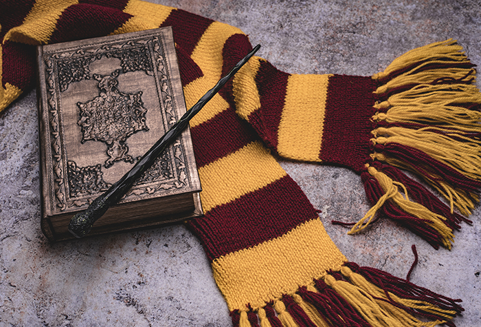 Déguisement adulte licence Harry Potter